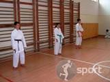 Budo Sport - arte-martiale in Arad   faSport.ro