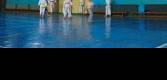 CS Karate Risei - arte-martiale in Iasi