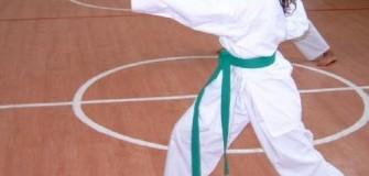 Budo Sport - arte-martiale in Arad