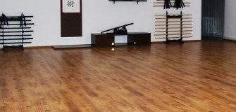 Bodai Shin Dojo - arte-martiale in Constanta