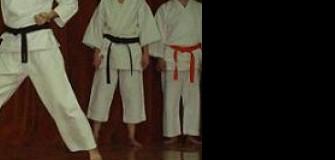 Enryo Karate - arte-martiale in Cluj-Napoca