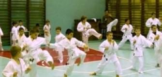Clubul Saishin Ramnicu Valcea - arte-martiale in Ramnicu-Valcea